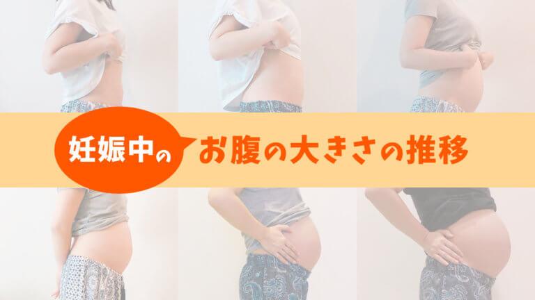 お腹 妊娠 膨らみ の ヶ月 四